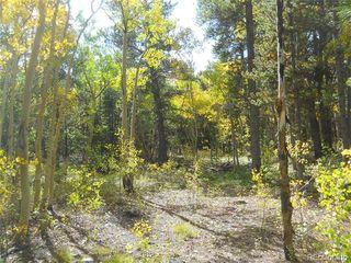 1299 Deer Trail